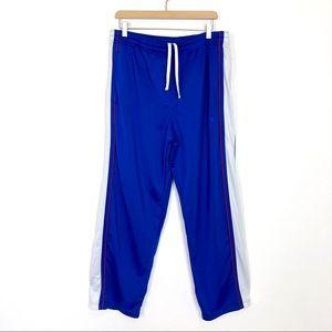 Vintage 90s y2k shiny blue track pants Starter